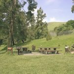 Parkview Area. Image of picnic tables.